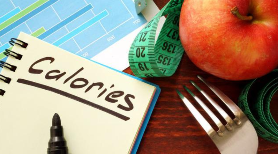 fungsi kalori bagi tubuh